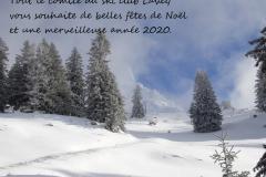 Martinaux-voeux-2020-avec-texte